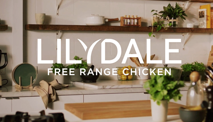 Lilydale Chicken Dumpling Soup
